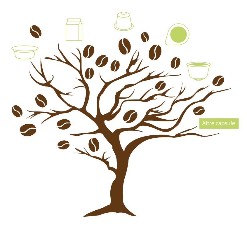 L'albero del caffè e delle bevande solubili